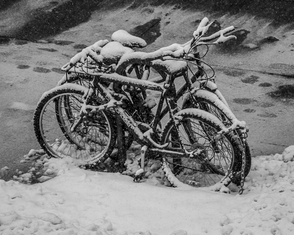 bikes1000