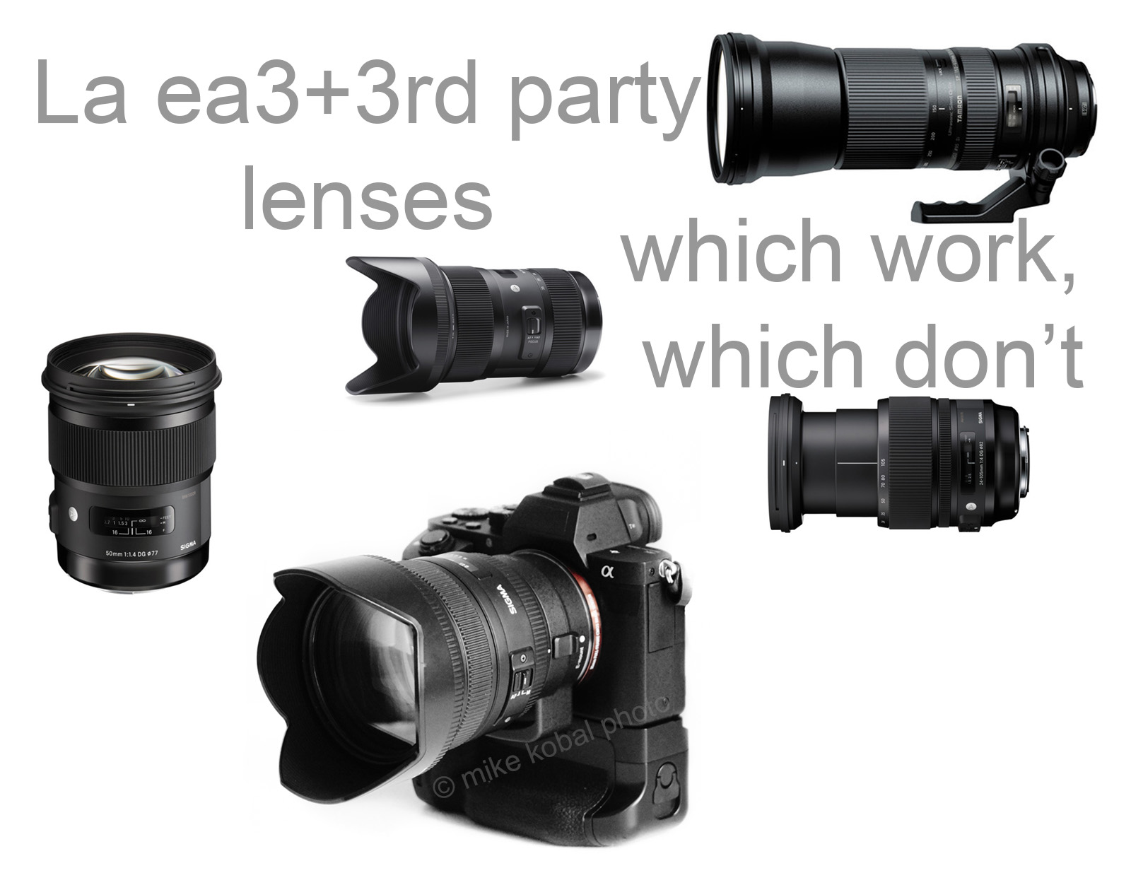 3rdparty_lenses_a7r2
